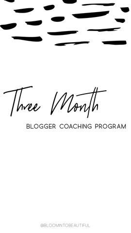 3 Month Blogger Coaching Program