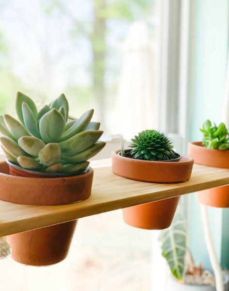 Single or Double Floating Plant Shelf