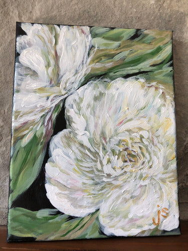 white peonies on black