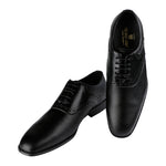 PIEDMONT DUAL FABRIC BLACK SADDLEBACK LACED SHOE