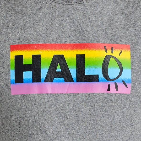 Halo Rainbow Training Top in Grey
