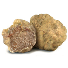 Load image into Gallery viewer, White Truffle & Mushroom Sauce 3.1 oz (90g) - Tita Italia