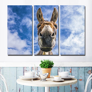 3 Piece Animal Donkey Canvas Art Print Wall Poster-094 (1)