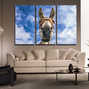 3 Piece Animal Donkey Canvas Art Print Wall Poster-094 (2)