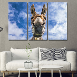 3 Piece Animal Donkey Canvas Art Print Wall Poster-094 (3)
