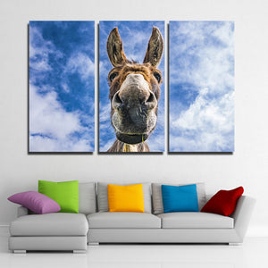 3 Piece Animal Donkey Canvas Art Print Wall Poster-094 (4)