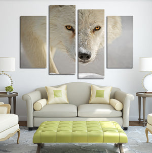 4 Panel White Wolf Picture Animal Art Canvas Print-032 (1)