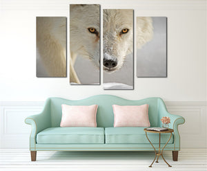 4 Panel White Wolf Picture Animal Art Canvas Print-032 (5)