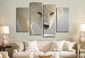 4 Panel White Wolf Picture Animal Art Canvas Print-032 (6)