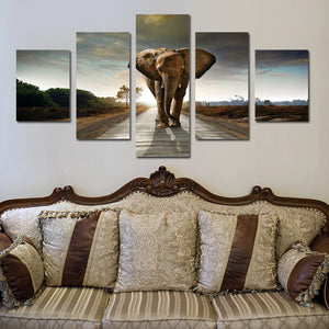 5 Panel African Elephant Canvas Wall Art Prints Picture- 033(2)