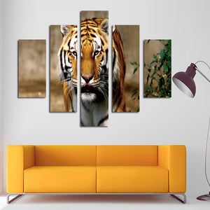 5 Panel Modern Prints Tiger Painting Canvas Wall Art -034 (1)