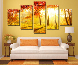5 Panel Sunshine in Fall Forest Scenery Painting Canvas Print-079 (3)