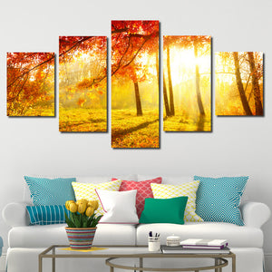 5 Panel Sunshine in Fall Forest Scenery Painting Canvas Print-079 (4)