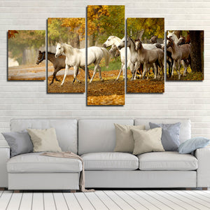 Herd of Horses Wall Art 5 Panel Canvas Print Poster Painting Picture-131 (2)