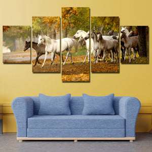 Herd of Horses Wall Art 5 Panel Canvas Print Poster Painting Picture-131 (3)