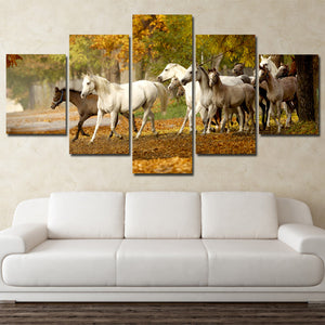 Herd of Horses Wall Art 5 Panel Canvas Print Poster Painting Picture-131 (4)