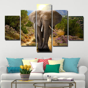 Home Decor Print Picture 5 Panel Animal Elephant Canvas Art-107 (1)