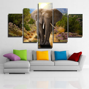 Home Decor Print Picture 5 Panel Animal Elephant Canvas Art-107 (2)