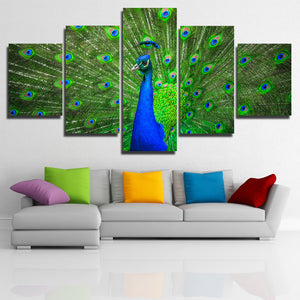 Modern Animal Peacock Prints Picture-111 (1)