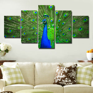 Modern Animal Peacock Prints Picture-111 (3)
