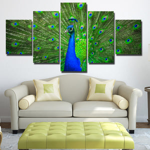 Modern Animal Peacock Prints Picture-111 (4)