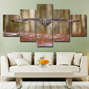 Strix Nebulosa Owl Print Picture Canvas Art 5 Panel Wall Painting- 132(2)