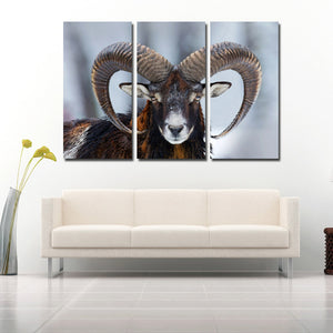 Wild Sheep Wall Art Print Picture 3 Panel Animal Canvas Painting Decor-117 (2)