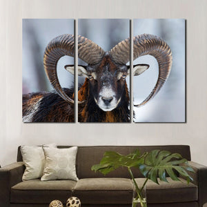 Wild Sheep Wall Art Print Picture 3 Panel Animal Canvas Painting Decor-117 (4)