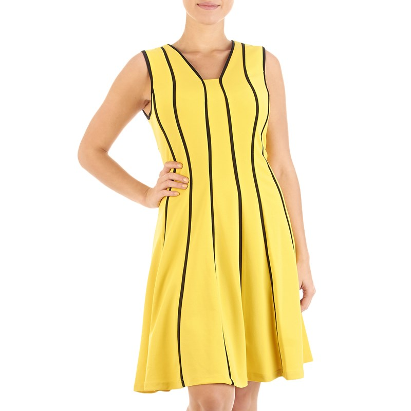 Bumblebee Fit and Flare Dress