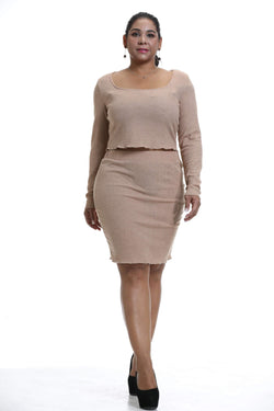 Plus Size Long Sleeve Top and Skirt Set