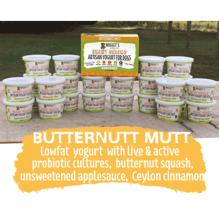 Nugget's Healthy Eats Dog Frozen Yogurt Butternut Mutt 3.5oz 4 pack
