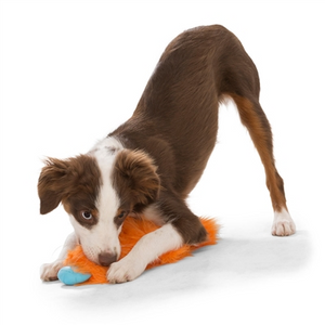 West Paw Custer Rowdies - Durable Plush Toys for Dogs