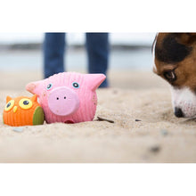 Load image into Gallery viewer, Hugglehounds Hamlet the Pig Ruff-Tex
