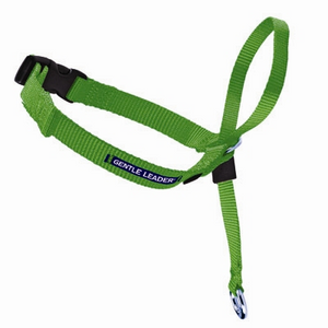 PetSafe Gentle Leader® Headcollar in CLAMSHELL - Quick Release