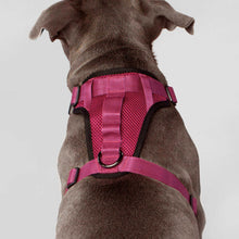Load image into Gallery viewer, Canada Pooch Everything Harness PINK/RED/BLACK