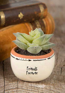 Friends Forever Faux Succulent