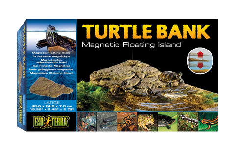 Turtle Bank - Large
