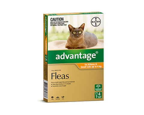 ADVANTAGE CAT ORANGE 4PK