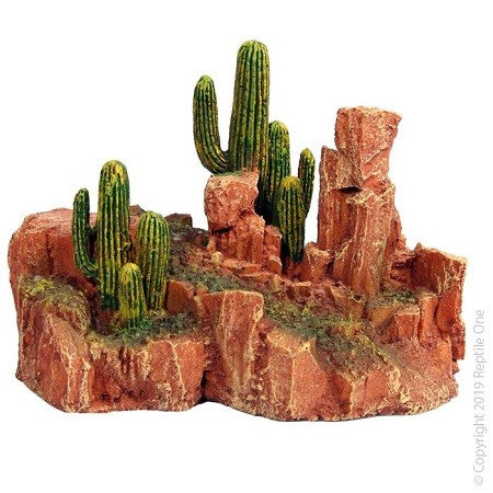 Cactus Garden With Resin Base Large 15.5x10x13.5cm