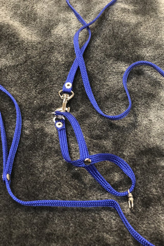 BIRD HARNESS & LEAD SET SMALL
