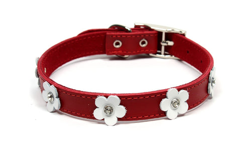DOGUE COLLAR FOXY RED 55CM