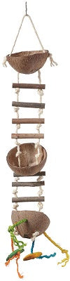 FEATHERED FRIENDS COCO FEEDER W LADDER 70X12CM