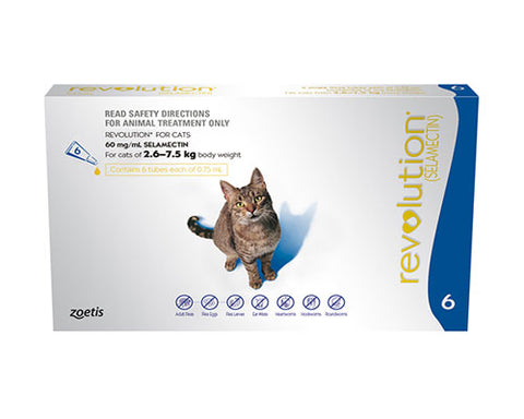 REVOLUTION CAT BLUE 6 PK
