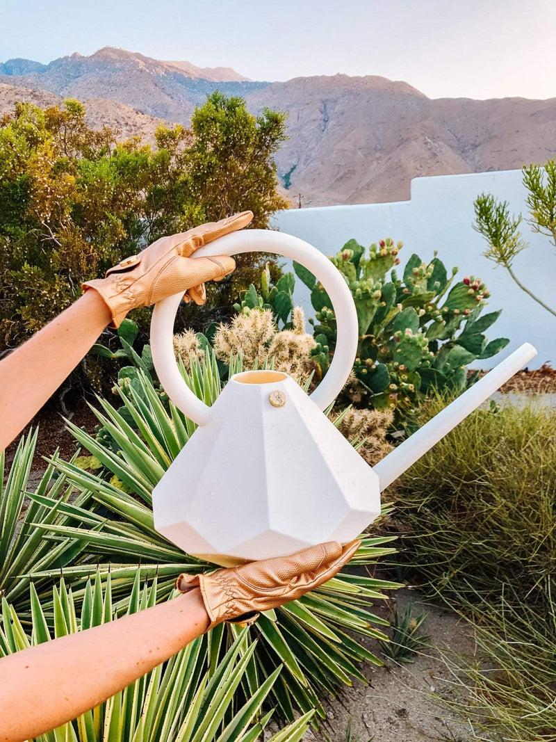 DIAMOND WATERING CAN (8L) + SPADE SET (CRYSTAL)