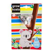 Load image into Gallery viewer, Grow A Koala
