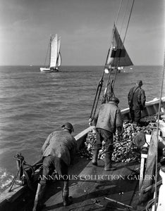 Watermen Dredging Oysters II (circa 1950)