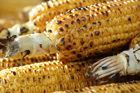 Close look of a grilled corn
