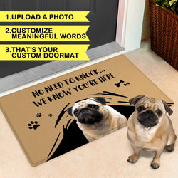 Custom Funny Doormat-No Need To Knock Door Mat With Your Pet's Photo And Name