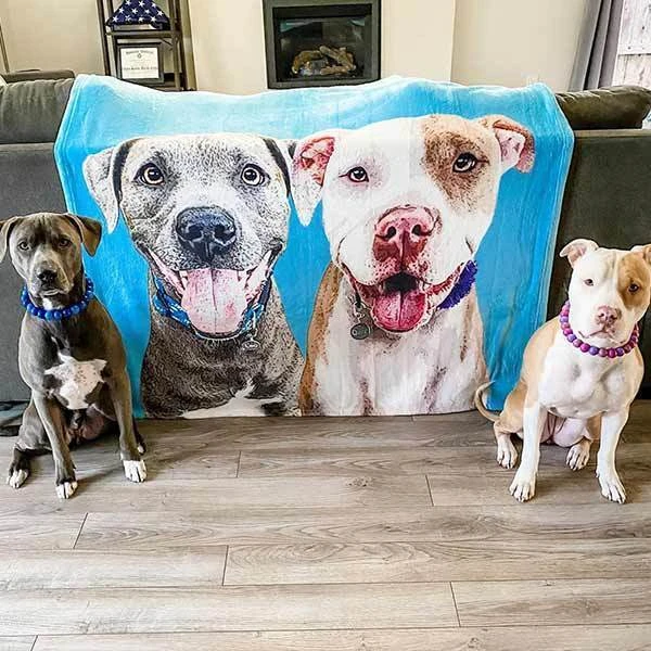 US Personalized Dog Blankets Fleece Blanket Painted Art With Your Pet's Name