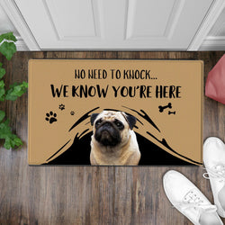 US Custom Funny Doormat-No Need To Knock Door Mat With Your Pet's Photo